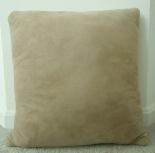 Old, bland pillow