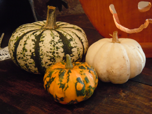 Detail little pumpkins and gourds