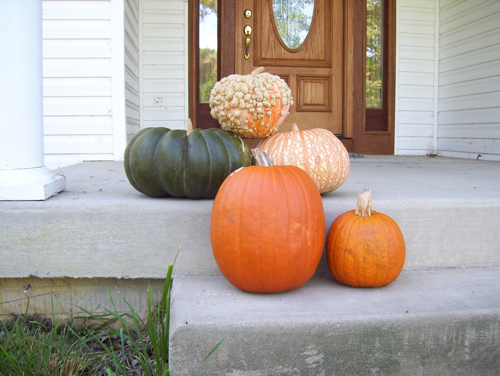 Pumpkins out front