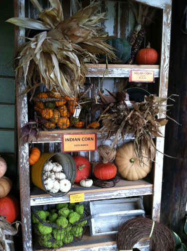 Display Shelves at Miller Farms Market