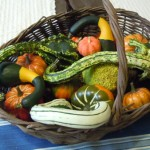Gourds