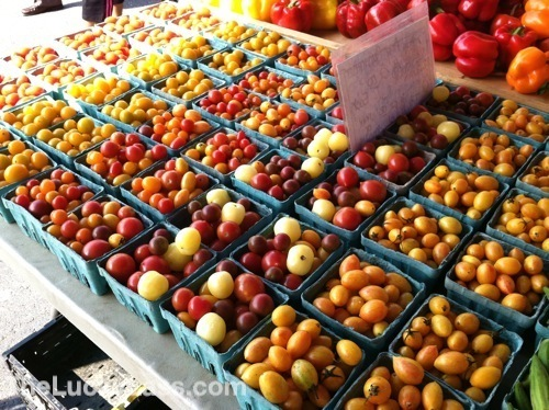 Cherry Tomatoes Varieties