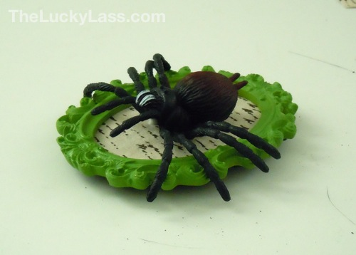 Glue spider to paper