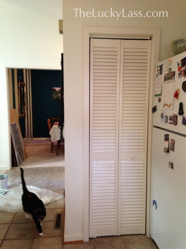 Pantry Doors Before